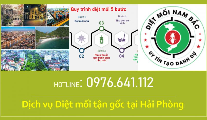diet-moi-tai-hai-phong